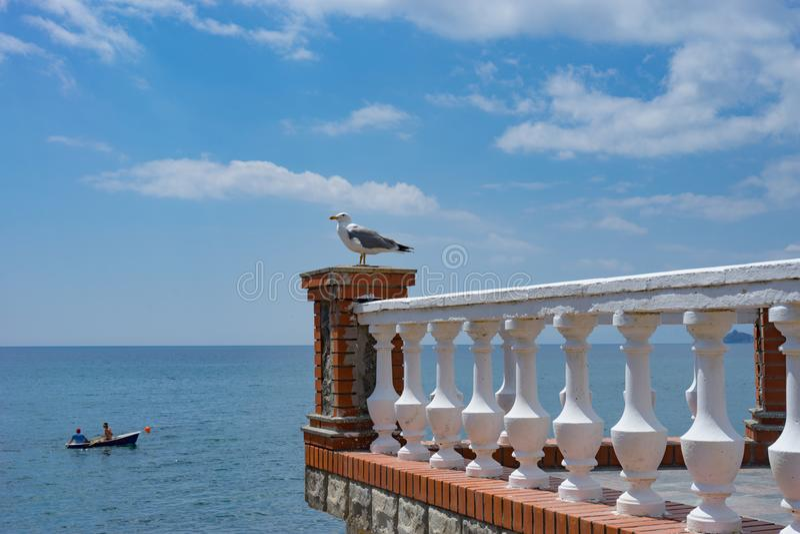 Een grote Zeemeeuw zit op een steenbalkon tegen het blauwe overzees stock afbeeldingen