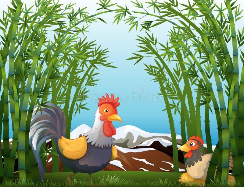 Een haan en een kip bij het regenwoud vector illustratie