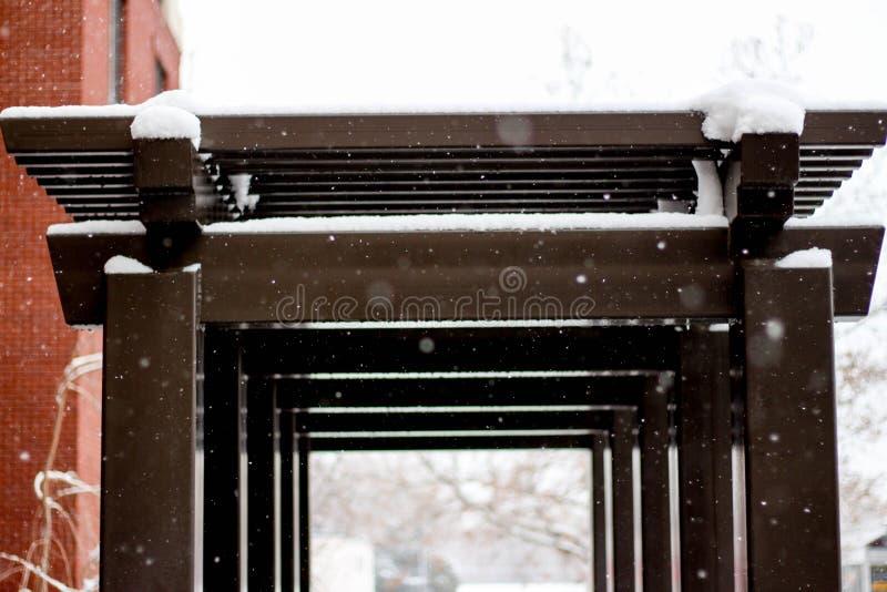 Een hazelaar kleurde overwelfde galerij in sneeuw wordt behandeld die royalty-vrije stock afbeeldingen