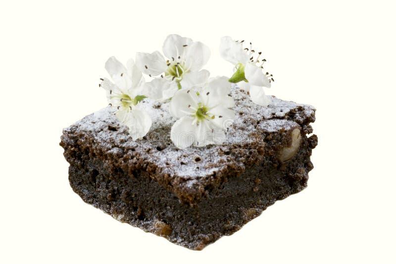 Een heerlijk die stuk van chocoladecake, met een witte kersenbloem wordt verfraaid op een witte achtergrond Eigengemaakte cakes t royalty-vrije stock afbeeldingen