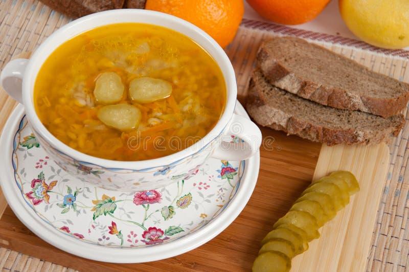 Een heerlijke soep maakte van ingelegde komkommers royalty-vrije stock foto's
