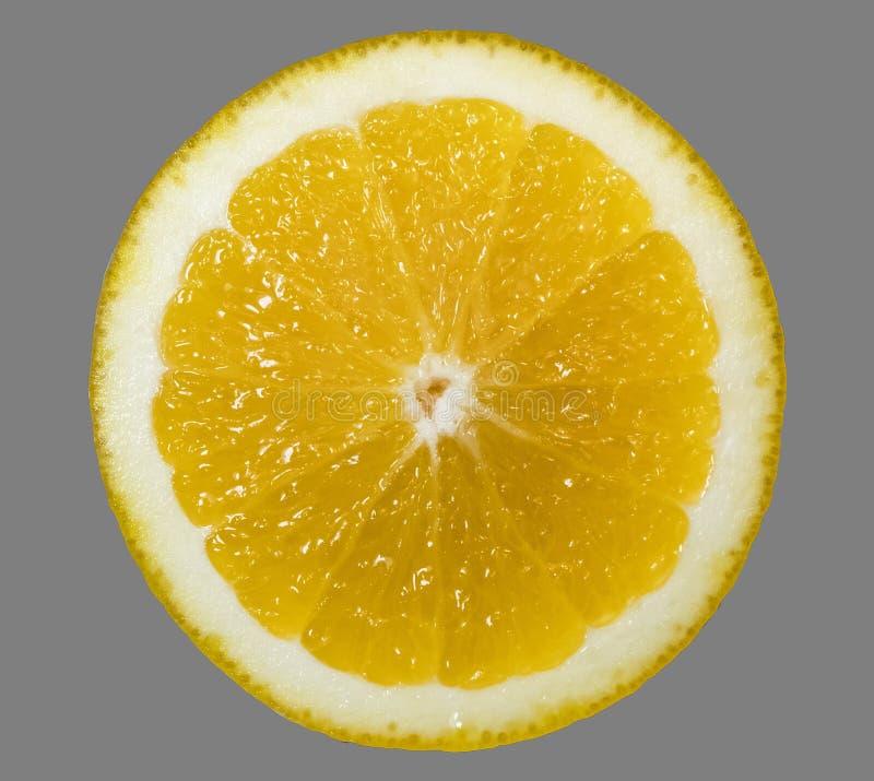 Een helder, rijp, sappig oranje fruit, dat enkel uit zijn boom wordt genomen Een smakelijk en gezond hert royalty-vrije stock afbeelding