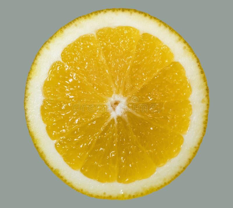 Een helder, rijp, sappig oranje fruit, dat enkel uit zijn boom wordt genomen Een smakelijk en gezond hert royalty-vrije stock foto