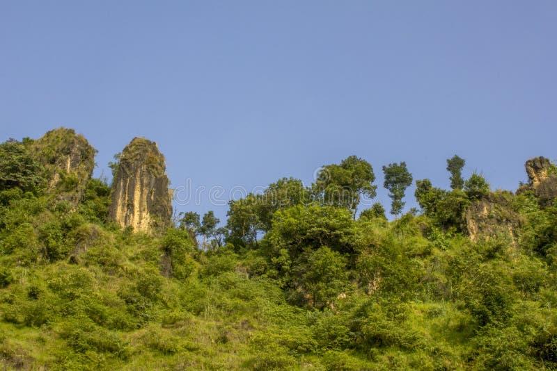 Een heldergroene berghelling met gras en bomen en rotsen onder de blauwe hemel stock afbeelding