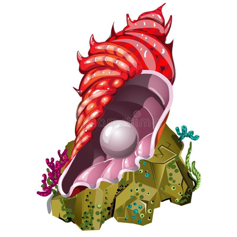 Een herinnering in de vorm van mooie zeeschelp rode kleur met natuurlijke die parel op witte achtergrond wordt geïsoleerd Vector stock illustratie