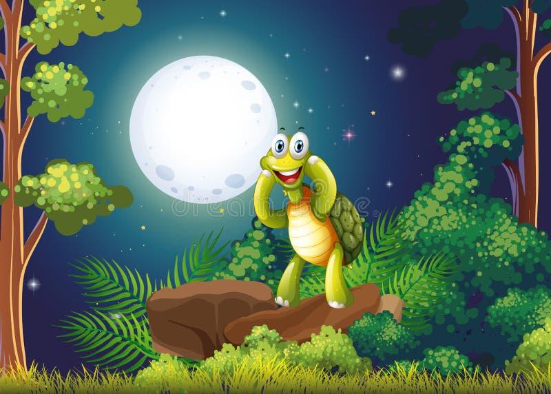 Een het glimlachen schildpad bij het bos in het midden van de nacht royalty-vrije illustratie