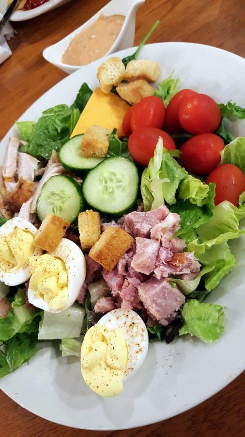 Een het heerlijke belangrijkste salade en kleden zich stock fotografie