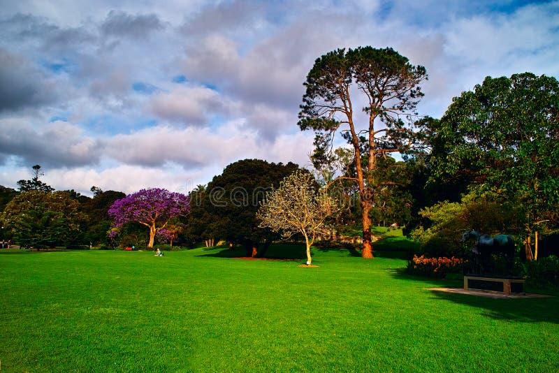 Een hoek van het Park royalty-vrije stock fotografie