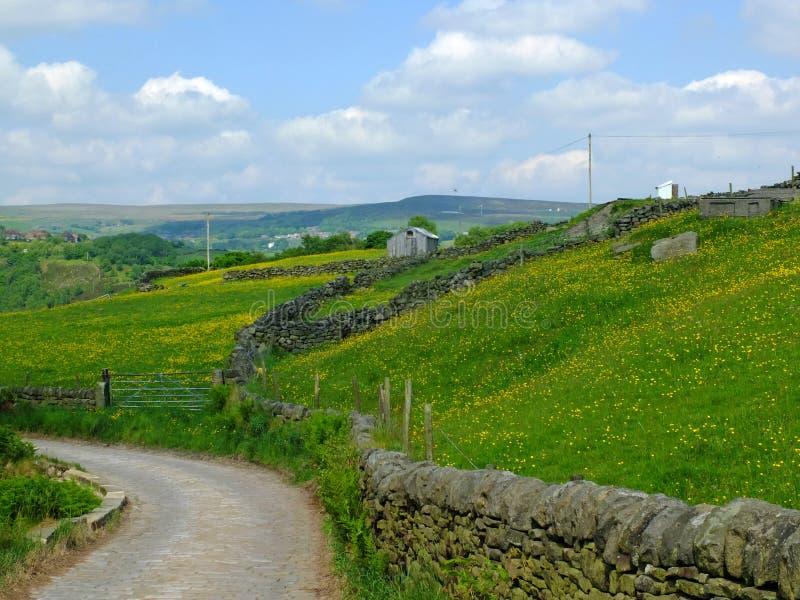 Een hoek van landweg gaan bergaf omringd door stenenmuren en de lenteweiden in de dallenplatteland van Yorkshire royalty-vrije stock afbeeldingen