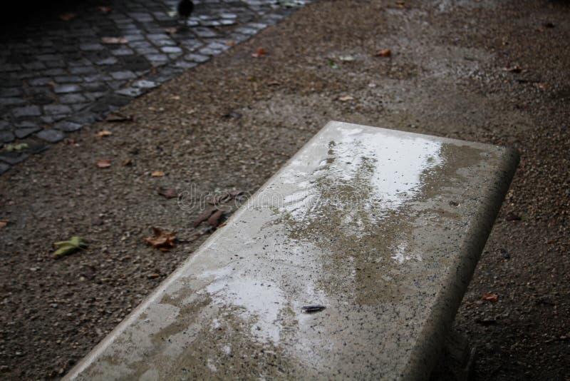 Een hoekig schot van een marmeren bank, in de Stad Rome van Vatikaan, met sommige droge bladeren op de vloer stock foto's