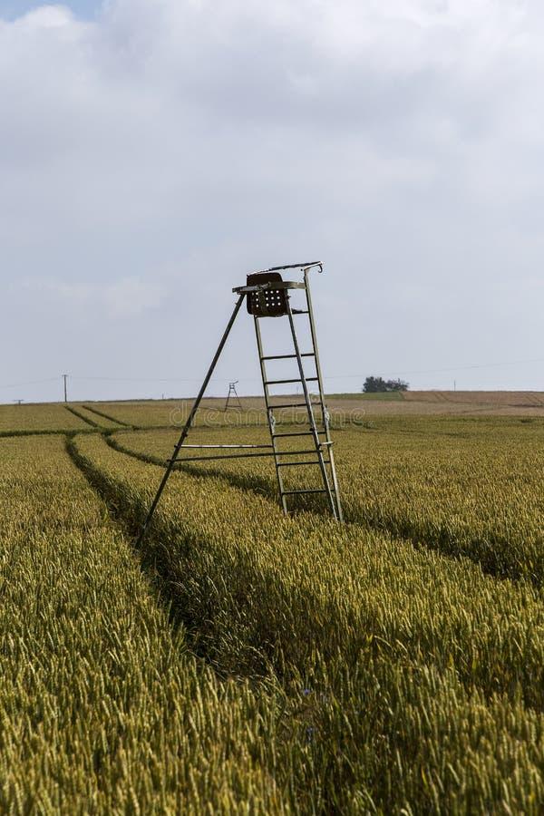 Een hoge zetel voor de jagers in het akkerland stock afbeelding