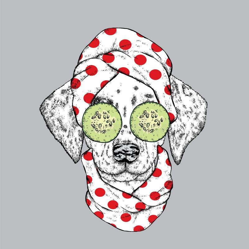 Een hond in een handdoek en met komkommer op zijn gezicht Vector illustratie Schoonheid en kuuroordbehandelingen Manier & Stijl d vector illustratie