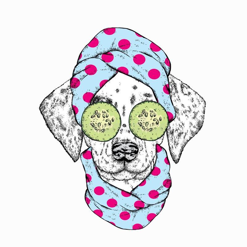 Een hond in een handdoek en met komkommer op zijn gezicht Vector illustratie Schoonheid en kuuroordbehandelingen Manier & Stijl d royalty-vrije illustratie