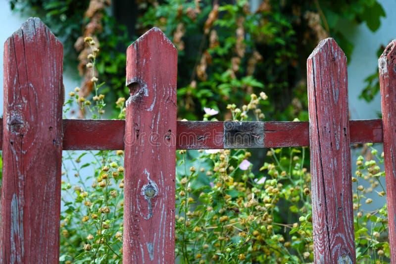 Een hoogtepunt bereikte houten omheining met geschroeide rode verf en één raad missen, die tuinonkruid tonen stock fotografie