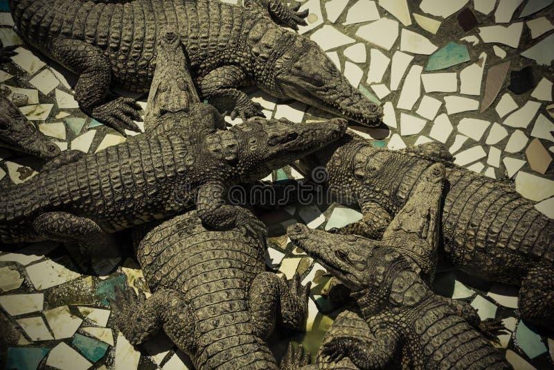 Een Hoop van krokodillen op het landbouwbedrijf royalty-vrije stock foto's