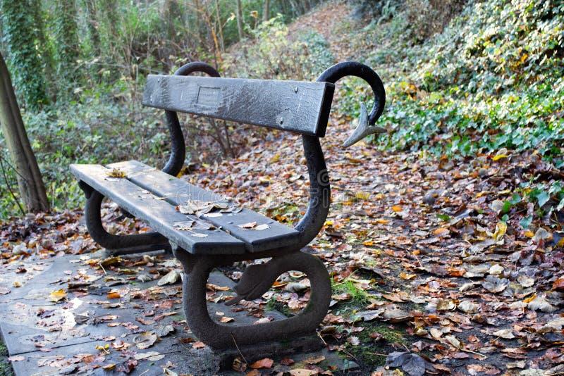 Een houten bank in de Herfst stock foto's