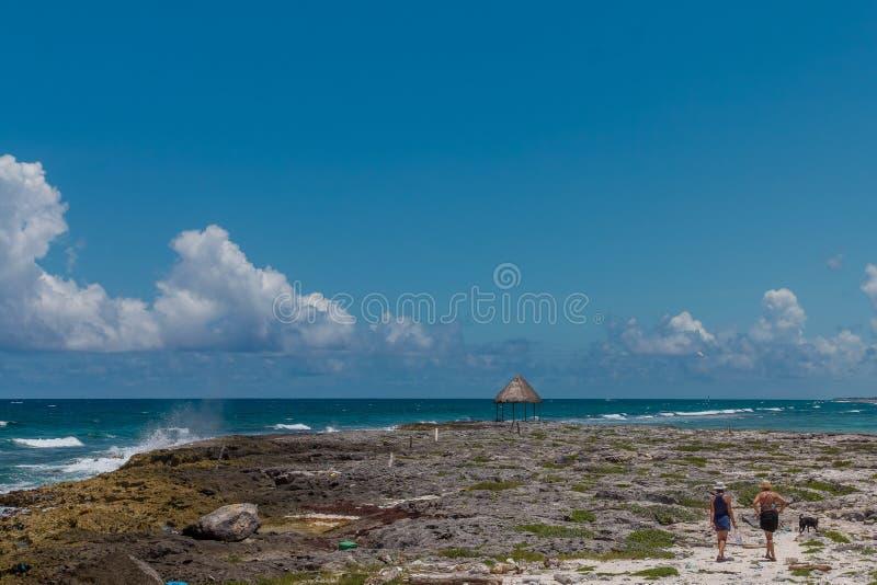 Een houten dok op de Caraïbische Zee in Mexico royalty-vrije stock afbeeldingen