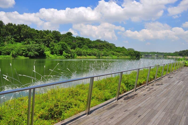 Een houten gang door de rivier bij Punggol-Waterweg stock foto's