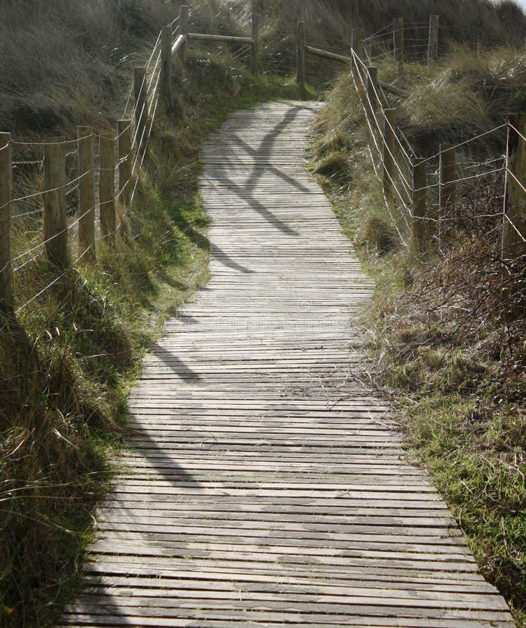Een houten gang met latjes over de duinen stock afbeeldingen