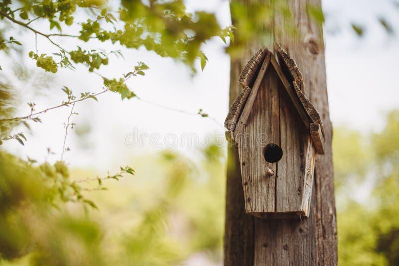 Een houten het nestelen doos die op een boom hangen royalty-vrije stock foto's
