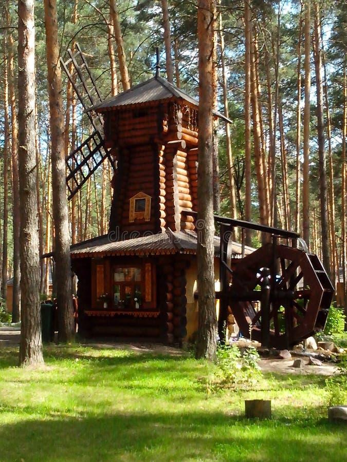Een houten molen in pijnboombos royalty-vrije stock fotografie