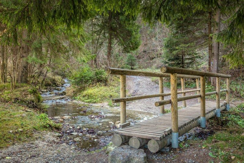 Een houten voetgangersbrug over een stroom in een bos stock afbeeldingen
