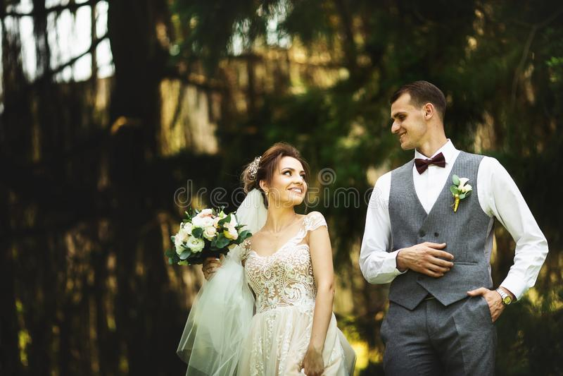 Een huwelijkspaar geniet van lopend in het hout De jonggehuwden koesteren en houden handen royalty-vrije stock fotografie
