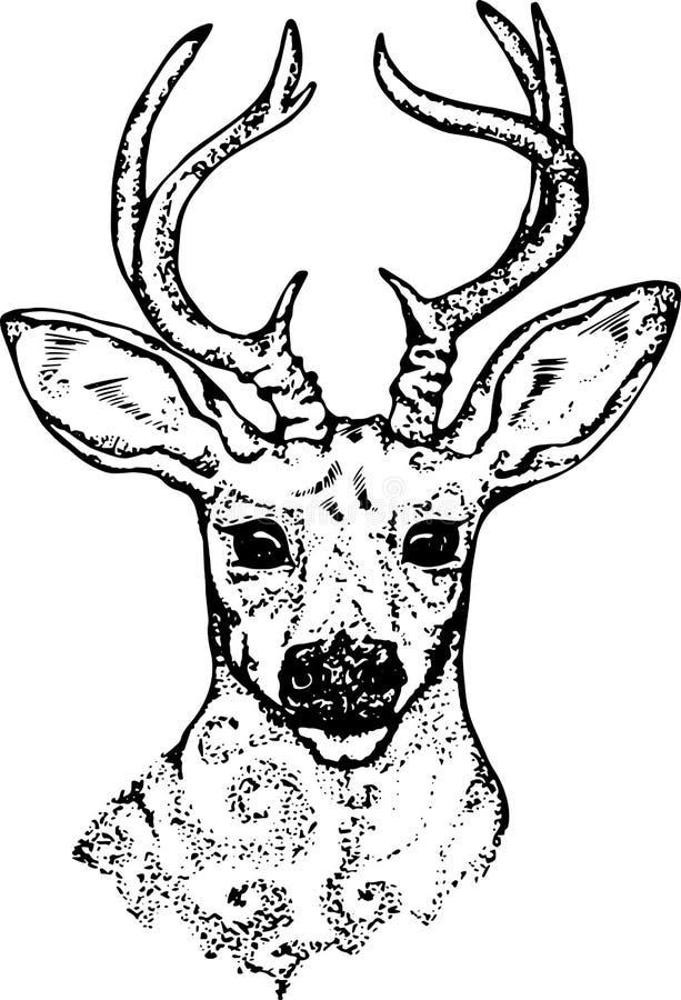 Een illustratie van een psychedelisch hert Silhouet van hoofd en hoornen vector illustratie