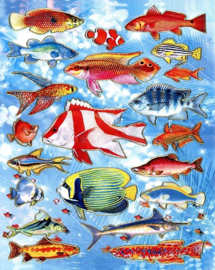 Een illustratie van verschillend type van kleurrijke vissen als achtergrond of behang stock illustratie