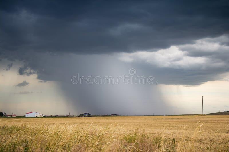 Een intense schacht van regen en hagel daalt aan de grond van een donkere onweerswolk royalty-vrije stock afbeeldingen