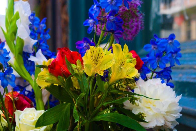 Een inzameling van het kleurrijke bloemen bloeien stock afbeeldingen