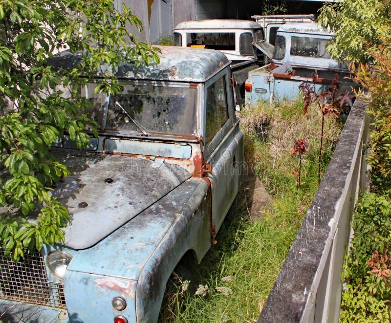 Een inzameling van oud roestig Land Rover Defenders in een tuin met bomen en struiken die rond hen groeien royalty-vrije stock fotografie