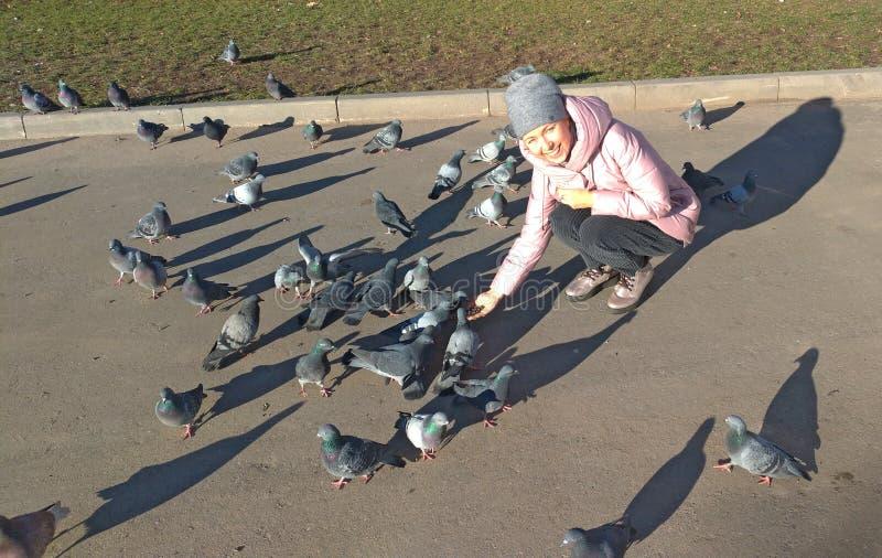 Een jong meisje glimlacht en voedt een troep van grijze duiven op de straat stock afbeeldingen
