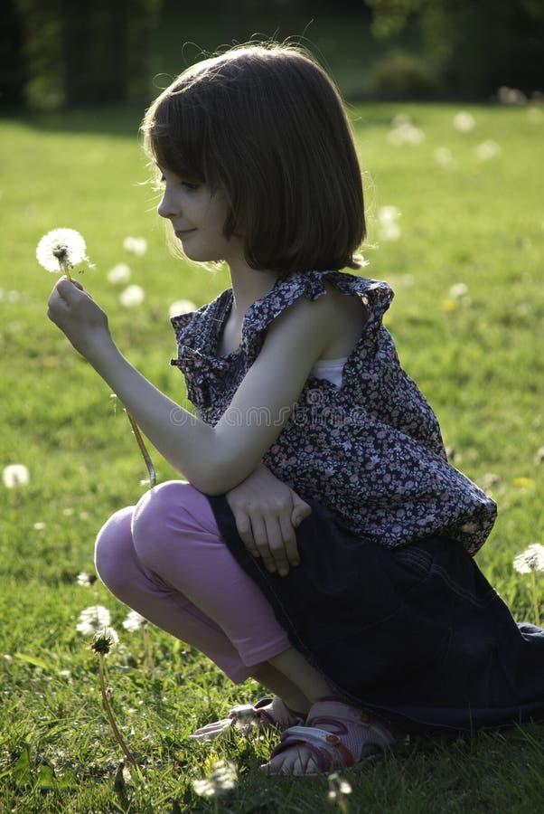 Een jong meisje houdt een paardebloem die zij net heeft geplukt stock foto's