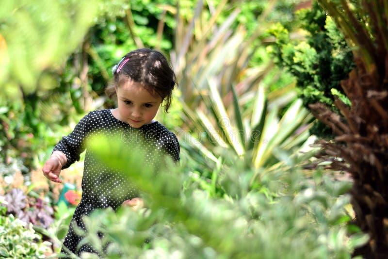 Een jong meisje onder installaties in een stedelijke tuin stock afbeelding