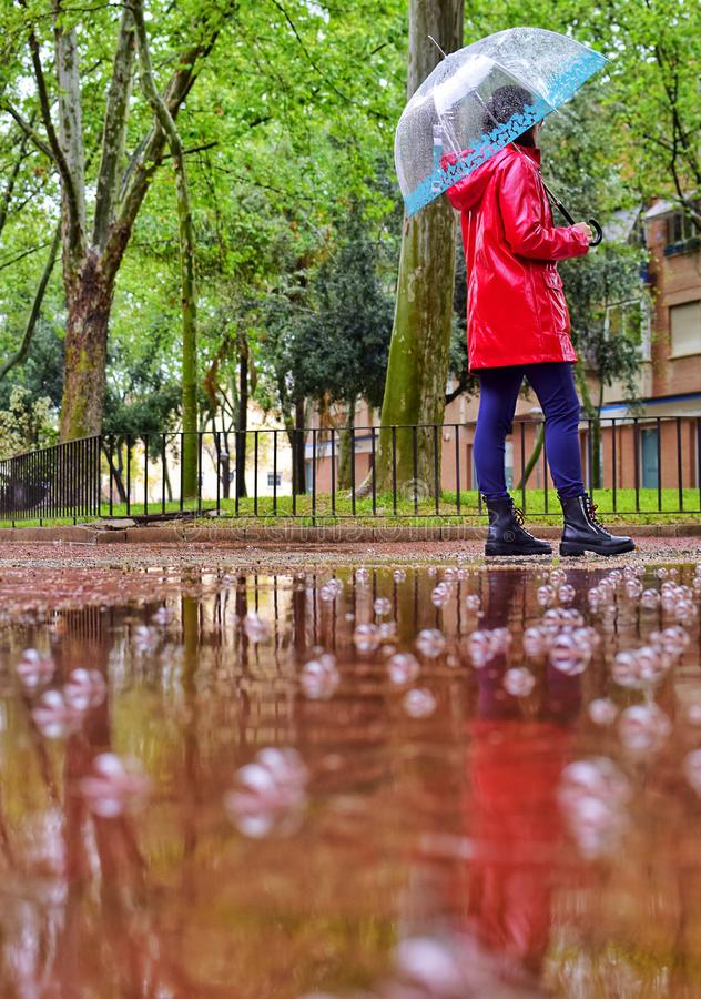 Een jonge meisjesgangen alleen op een regenachtige dag door een park onder een paraplu stock afbeelding