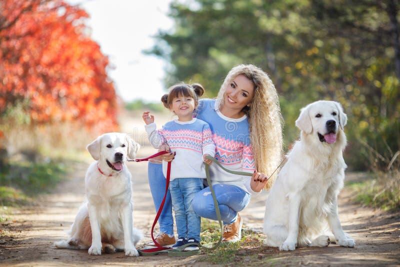 Een jonge moeder met een klein meisje en twee honden op een gang in het Park in de herfst royalty-vrije stock foto's