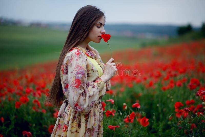 Een jonge vrouw met lang haar die in kleding dragen, die zich op het gebied van papaversbloemen bevinden, ruikt papaver, landscha stock fotografie