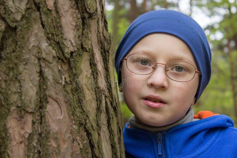 Een jongen dichtbij een pijnboomboom, de jongen koesterde een boom in het bos, die de aard van het bos beschermen stock afbeelding