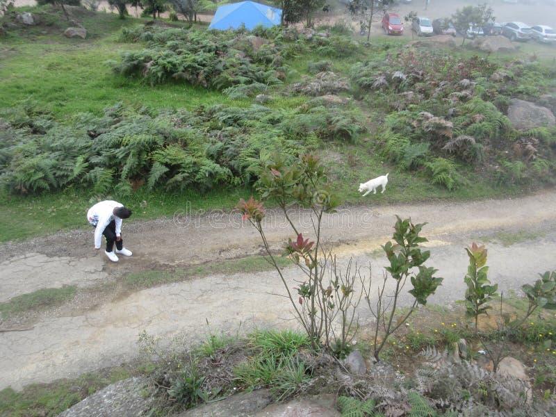 Een jongen die met haar hond in de aard spelen royalty-vrije stock afbeeldingen