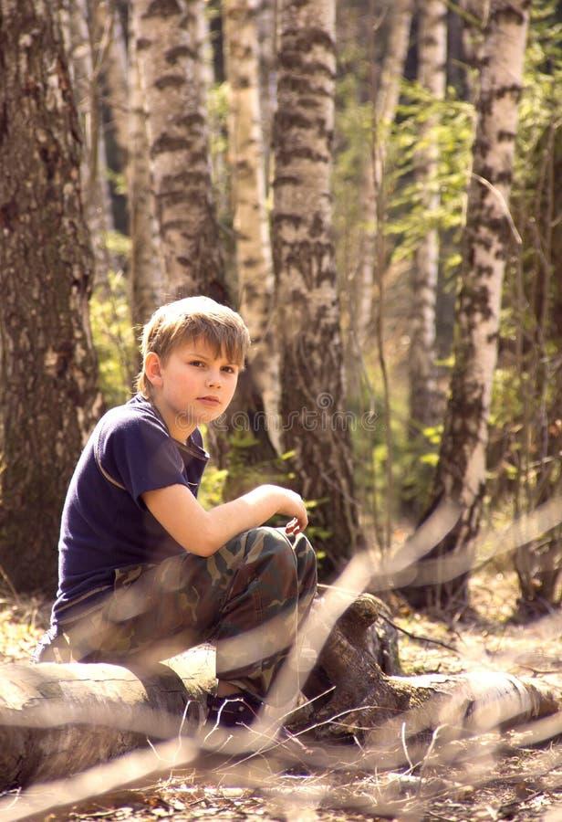Een jongen in het bos royalty-vrije stock afbeelding