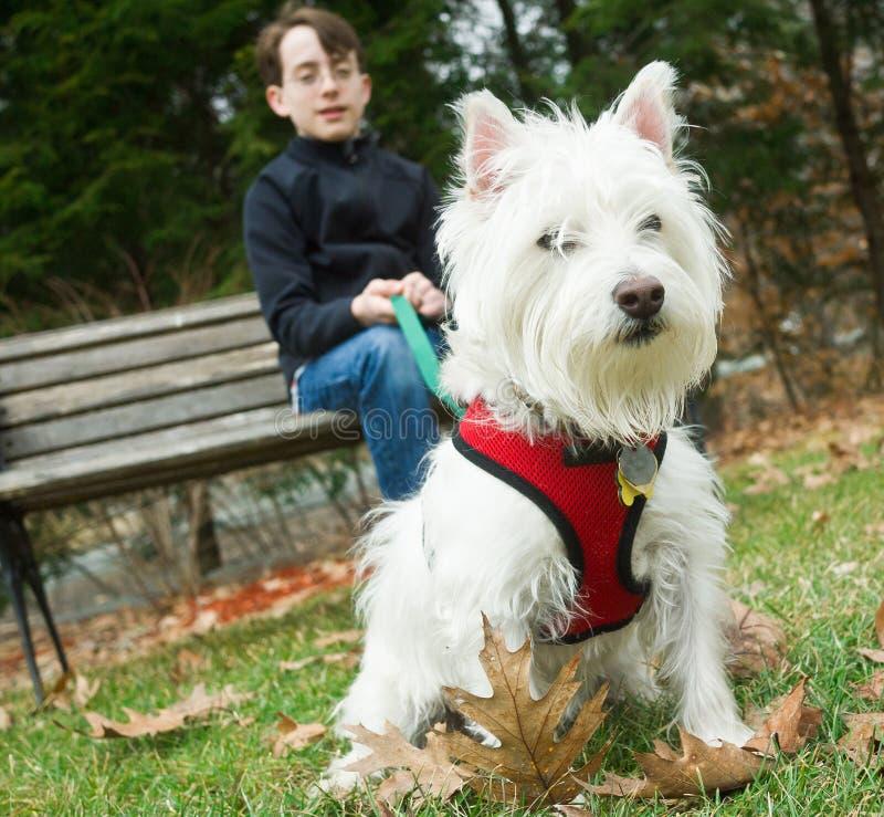Een jongen in het park met zijn hond