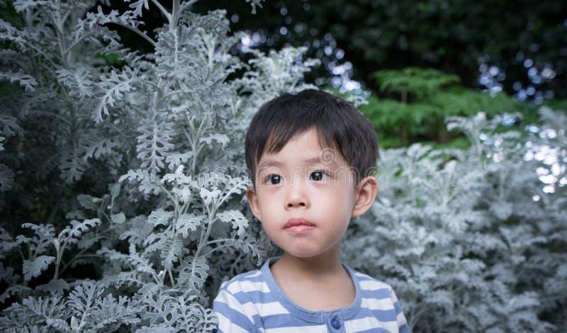 Een jongen onder het blad royalty-vrije stock afbeelding