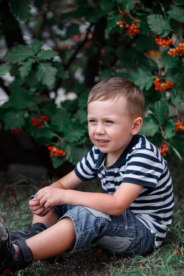 Een jongen op een gang met het park onder mooie rijpe lijsterbes royalty-vrije stock fotografie