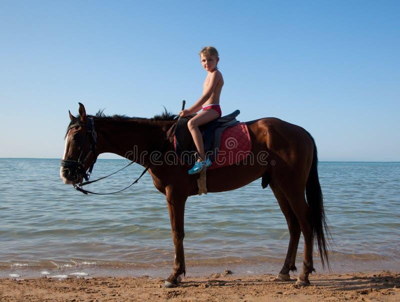 Een jongen op horseback stock afbeelding