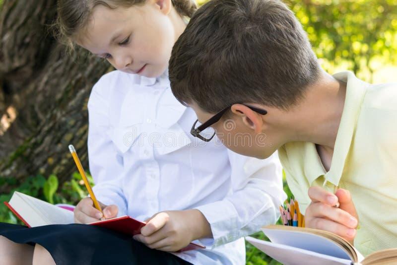 Een jongen piept in een handboek voor een meisje tijdens een les in een park hoe te om een taak van een leraar te doen royalty-vrije stock afbeeldingen