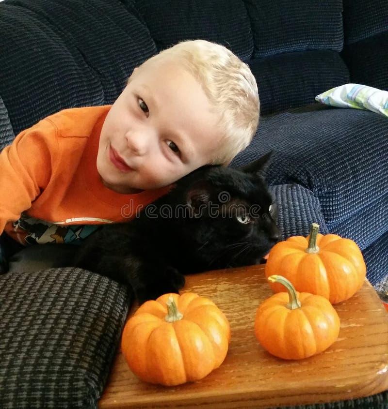 Een jongen, zijn kat en pompoenen royalty-vrije stock foto's
