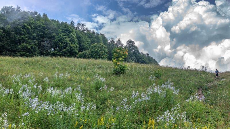 Een jongensreiziger met een trekkingspolen loopt omhoog langs de weg de groene helling aan dikke wolken royalty-vrije stock foto's