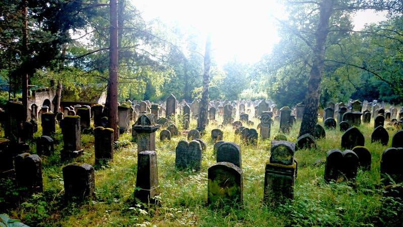 Een Joodse begraafplaats stock foto's
