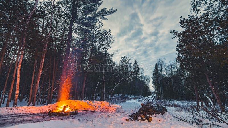 Een kampvuur in het de winterhout stock foto